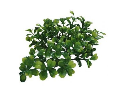 Lucky Reptile Turtle Plants Bacopa cca 40 cm