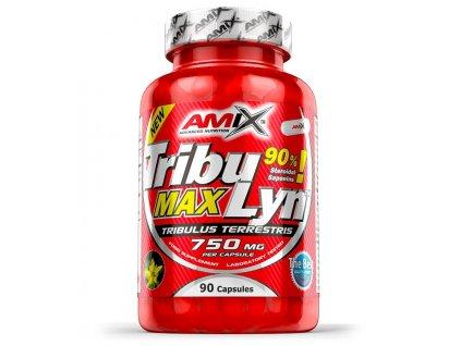 Amix TribuLyn Max 90% 90tbl